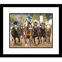 Buy cheap Edgar Prado Barbaro Horse Racing Framed 8x10 Photograph Kentucky Derby Front View Color from wholesalers
