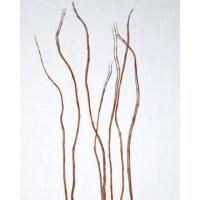 Buy cheap Curly Willow Branches for Centerpieces (Short Stem) from wholesalers