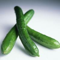 Buy cheap Cucumber product
