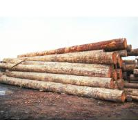 Buy cheap >>wood from wholesalers