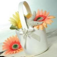 Buy cheap Beach Flower Girl Basket - White or Ivory from wholesalers