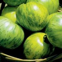 Buy cheap Heirloom Green Zebra Tomato from wholesalers