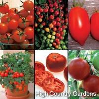 Buy cheap Hybrid Tomato Starter Plant Sampler from wholesalers