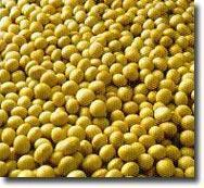 Buy cheap Soy isoflavone(Soybean Extract) from wholesalers