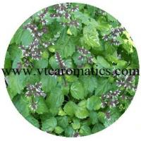 Buy cheap Leaves from wholesalers
