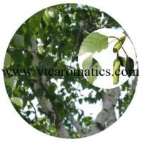 Buy cheap Bark from wholesalers