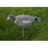 Buy cheap Decoy from wholesalers