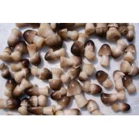 Buy cheap Mushrooms in brine from wholesalers