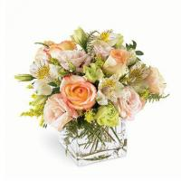 Buy cheap Wonders Pastel Flower Bouquet product