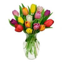 Buy cheap 15 Rainbow Tulips Bouquet product