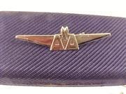 Buy cheap Rare, Vintage American Airlines OnBoard Souvenir Wings Lapel Pin from wholesalers