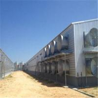 Buy cheap Prefabricated Steel Structure Enclosed Poultry House/Chicken House (KXD-PCH9 chicken huose from wholesalers