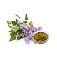Buy cheap Cloves Extract from wholesalers