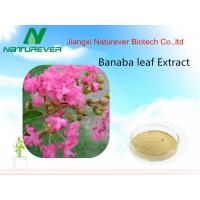 Buy cheap Banaba leaf extract from wholesalers