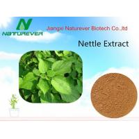 Buy cheap Nettle Root Extract product