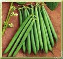 Buy cheap French Beans from wholesalers