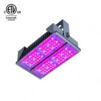 Buy cheap Veg Switch Grow Light from wholesalers