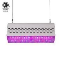 Buy cheap Mushroom Growing Kit Grow Light from wholesalers