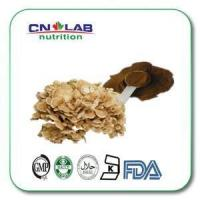 Buy cheap Grifola Frondosa(Maitake Mushroom) Extract Powder Extract of Grifola Frondosa, Polysaccharide. from wholesalers