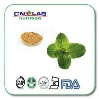 Buy cheap Pure Organic Peppermint Mint Leaf Extract Powder from wholesalers