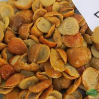Buy cheap Brined Mushroom Name: Boletus Cap in Brine from wholesalers