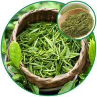 Buy cheap Green Tea Powder, with Effective Ingredient Green Tea Polyphenolswholesale China Wholesale from wholesalers