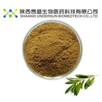 Buy cheap Olive Leaf Extract Powder from wholesalers