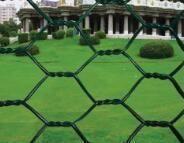 Buy cheap Wire Mesh PVC Hexagonal Wire Netting from wholesalers