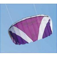 Buy cheap Power Kite NameRush Trainer power Kite from wholesalers