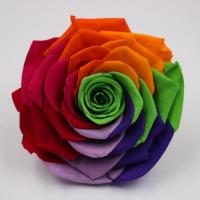 Buy cheap 10 CM Big Size Preserved Rainbow Rose Flower Head from wholesalers