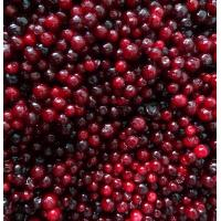 Buy cheap IQF Berries Frozen Lingonberry from wholesalers