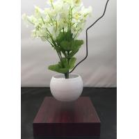 Buy cheap wooden base Levitating Air Bonsai Flower Plant Pots In Office for Business Gifts from wholesalers