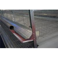 Automatic Cages Feeding Equipment
