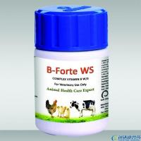 Nutritional Products COMPLEX VITAMIN B W/S