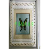 Buy cheap Edible Insects Butterfly arts and crafts2 from wholesalers