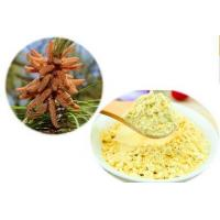 Buy cheap Cell-Wall Broken Pine Pollen Powder from wholesalers