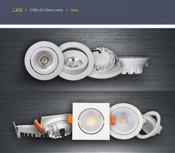 Quality COB LED DOWN LAMP for sale
