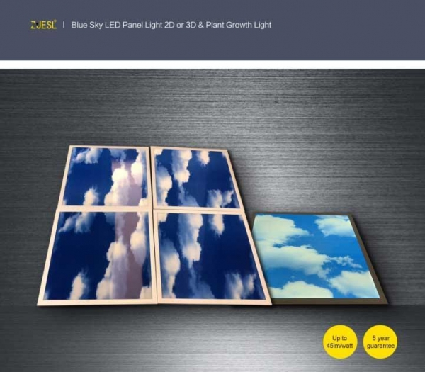 Buy cheap BLUE SKY 2D OR 3D LED RANEL LIGHT from wholesalers