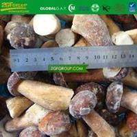 China IQF whole boletus edulis on sale