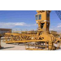 Buy cheap Tower Crane(S10847002) from wholesalers